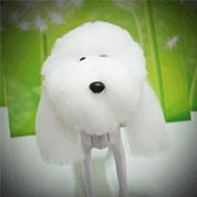 독위그 - 헤어 연습용(DogWig hair) [모형제외] /얼굴미용/애견미용/연습용/부분미용/애견실습